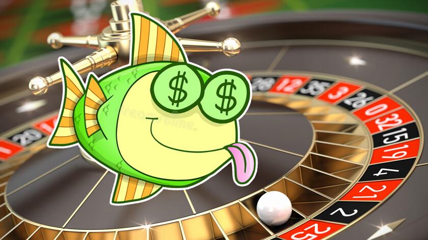 данных казино база для