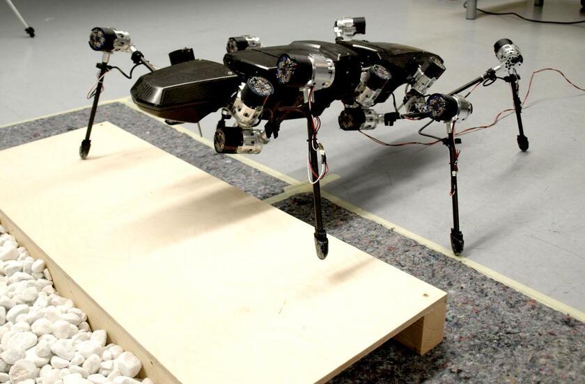 Роботы с пугающе крутыми возможностями (3 фото + 9 Видео)