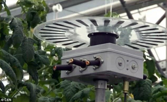 Лазер, который сможет спасти планету от голода, изобрели специалисты Мичуринского государственного аграрного университета. Растения, на которые воздействует установка, растут вдвое быстрее, повышается урожайность