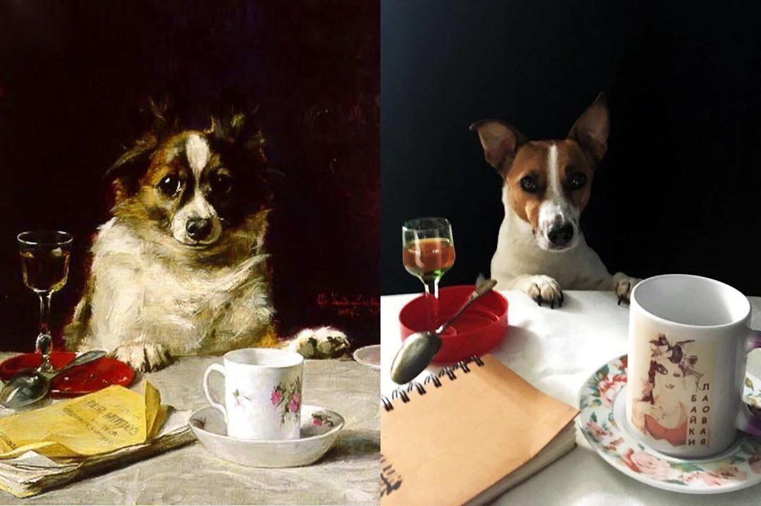 Порно Эротика Собаки Девочки