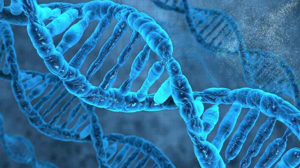 Ученые создали искусственную квантовую жизнь