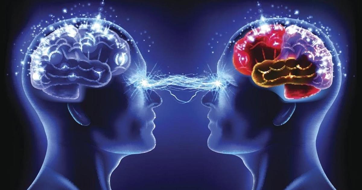 отличие передача картинки в мозг ему удается сохранять