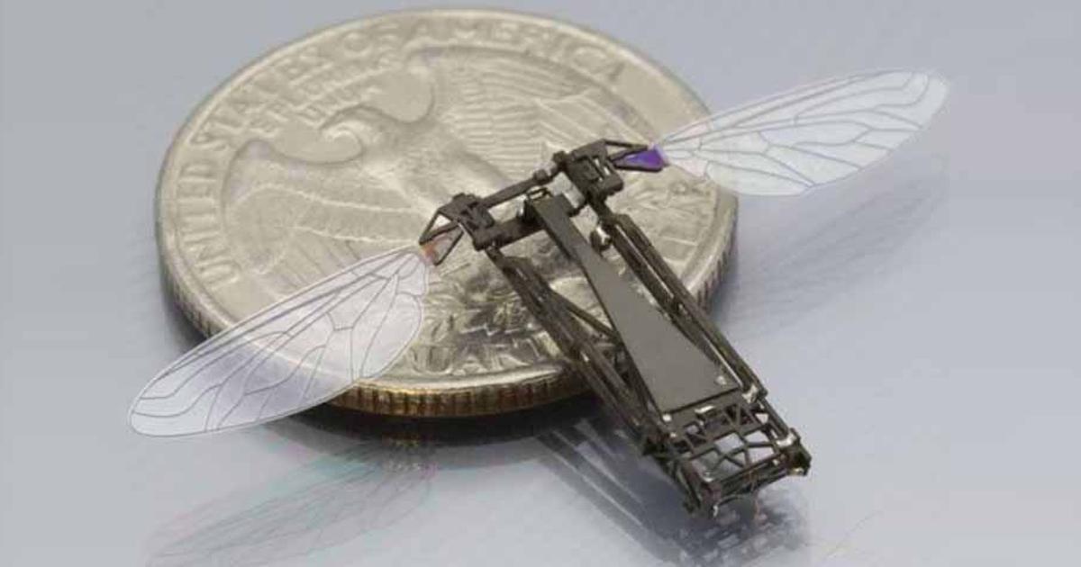 Роботизированных пчел научили летать и плавать