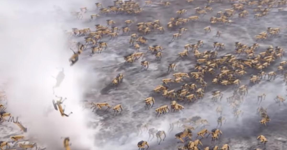 Появилось видео последствий «захвата» Земли роботами