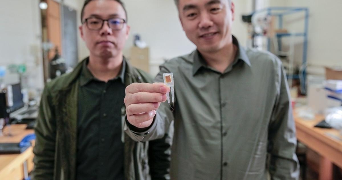 Ученые создали имплант, который подавляет чувство голода ипомогает похудеть