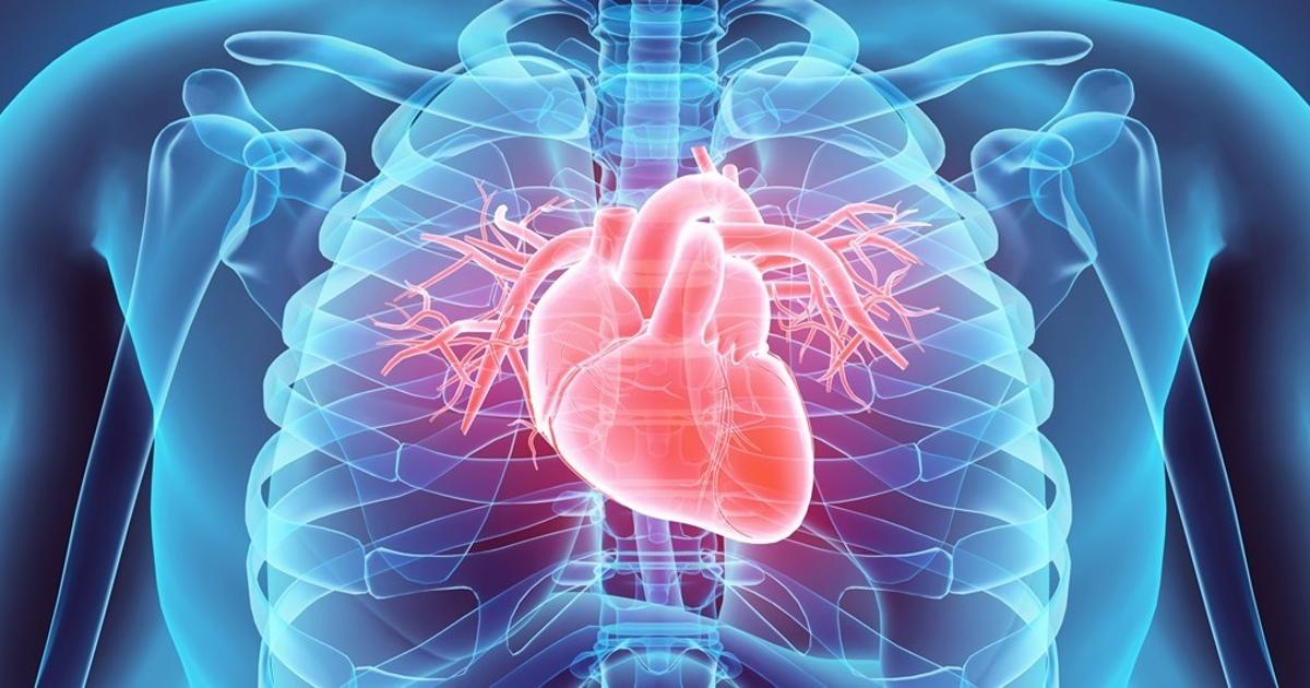 Российские ученые лечат сердце пациента его собственными клетками
